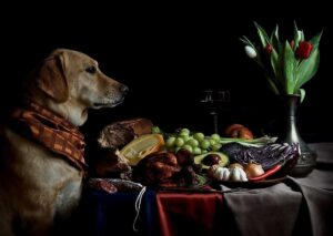 The Supper by Curious Zed