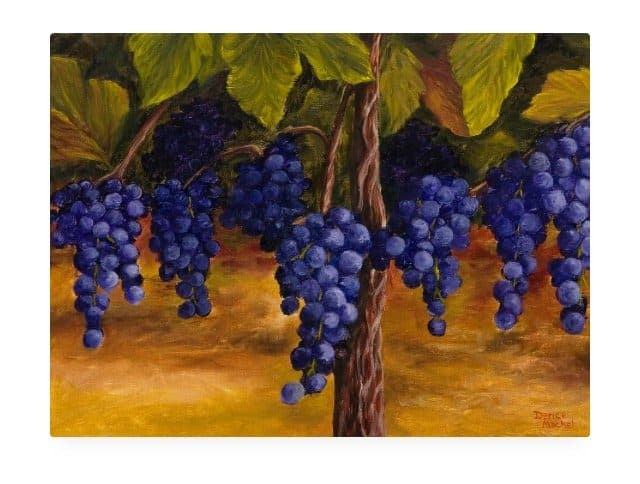 On The Vine by Hawaiian Painter Darice Machel McGuire