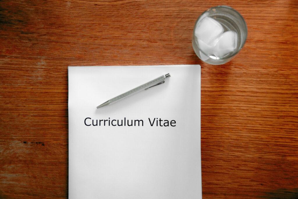 Artist curriculum vitae, Artist CV